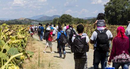37,6 mio flygtninge i Danmark