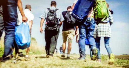 Migranterne fra Tyrkiet skal aldrig lukkes ind i Danmark